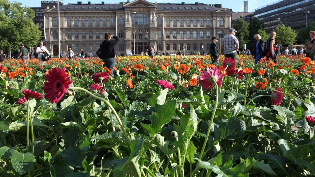 The Finnish National Gallery in spring/ Ninara/ Flickr