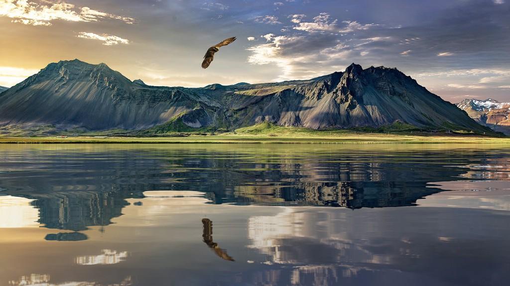 New Zealand Landscape | © Andrew-Art/Pixabay