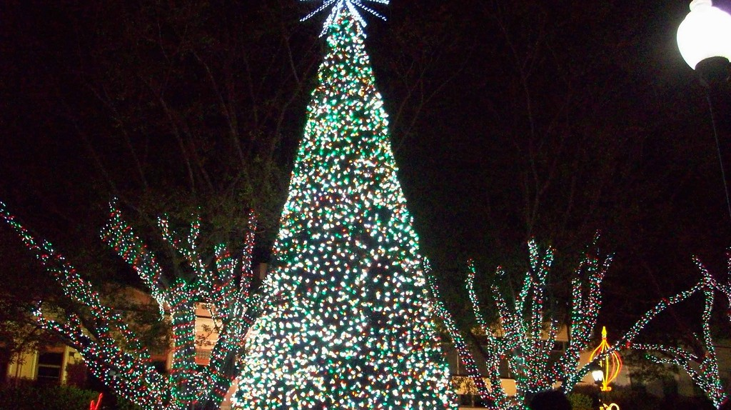 A Christmas tree and lights in Mayaguez | © Cryo Mariena/Flickr