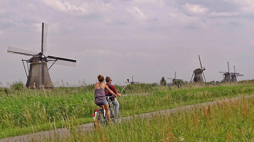 Cyclists riding through Kinderdijk Mill Network   © pixabay