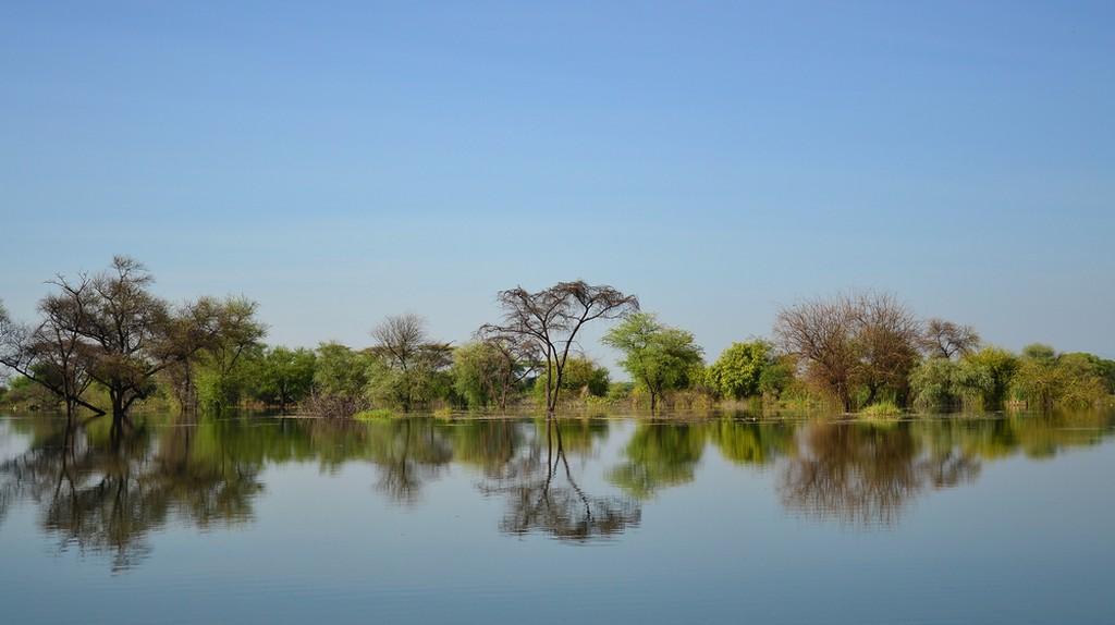 Lake Baringo, Kenya    © Verbena/Shutterstock