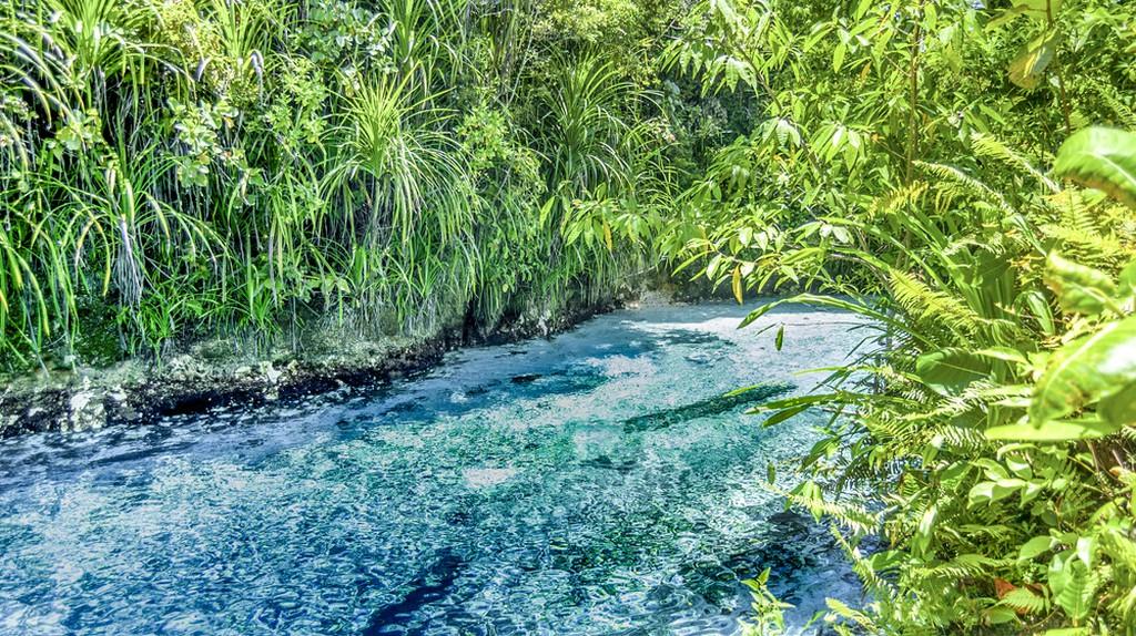 The Enchanted River | ©  Cezary Stanislawski / Shutterstock