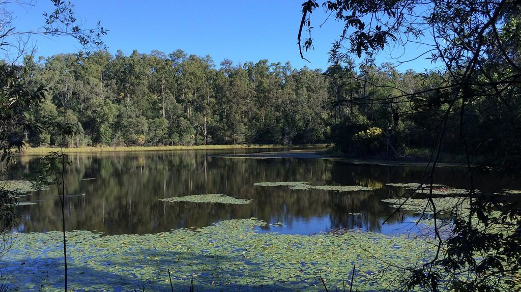 Enoggera Reservoir | © Tamyka Bell/Flickr