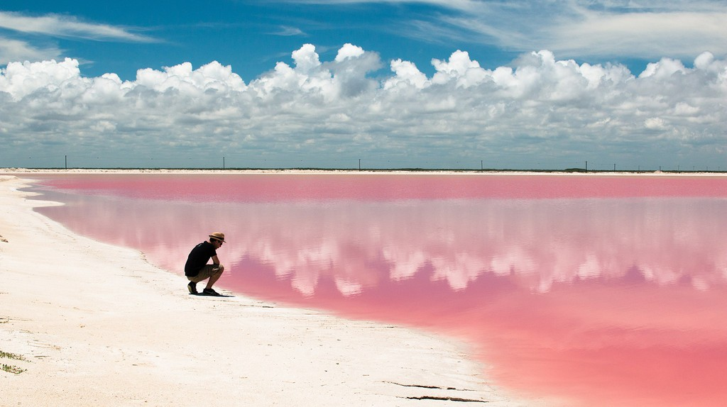 The beautiful pink hued waters of Las Coloradas | © Walter Rodriguez from Helsinki, Finland/WikiCommons