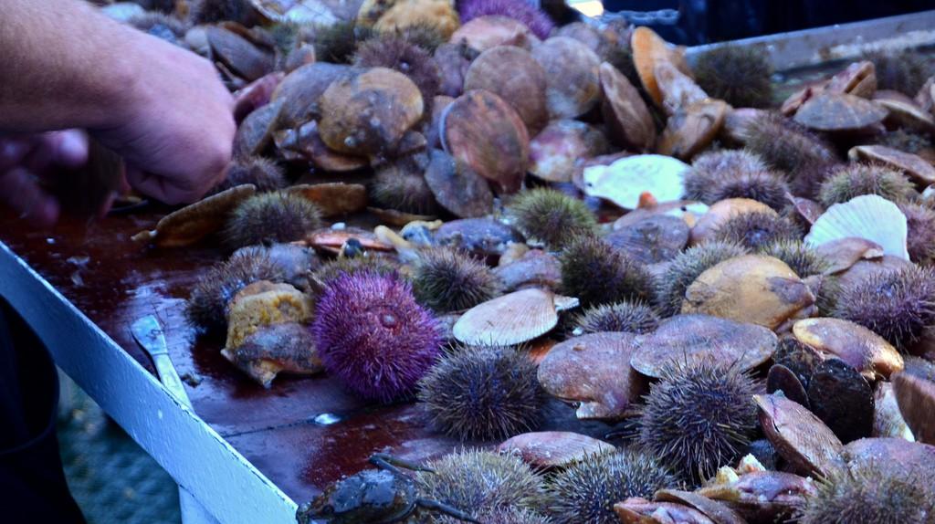 Fresh seafood out of Breidafjordur | © Richard Whitaker/Flickr