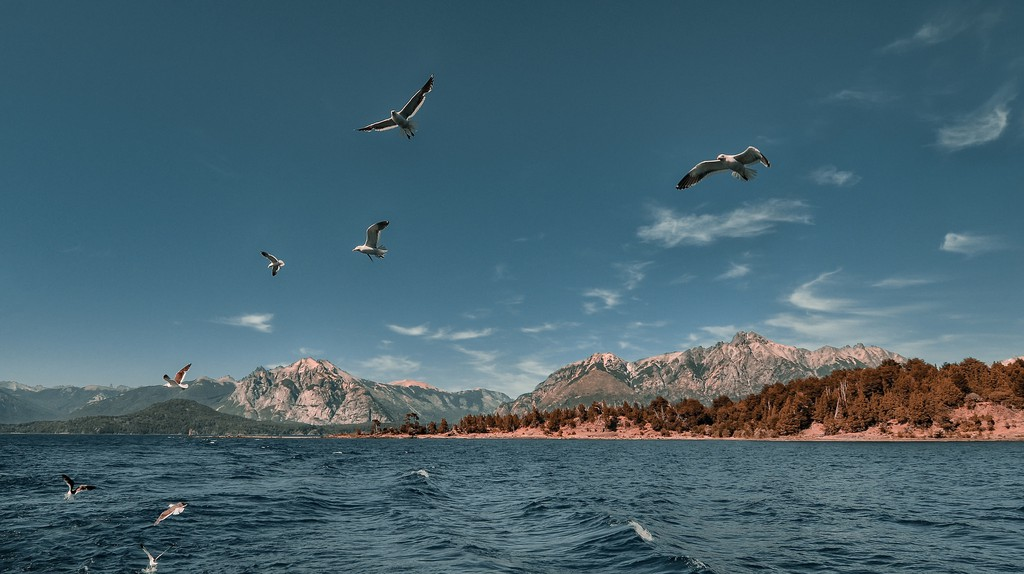 Birds in flight over Lake Nahuel Huapi | © Emilio Küffer/Flickr