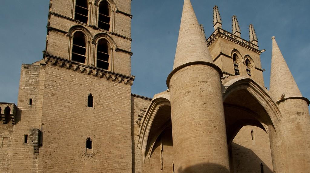University of Montpellier | © Jacqueline Macou / Pixabay