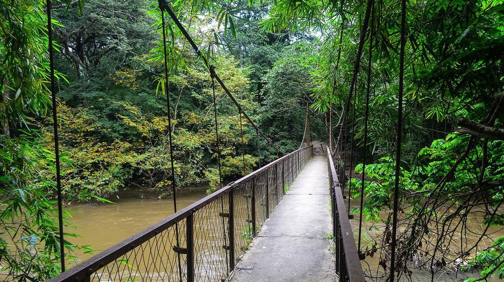 A wooden bridge in Ijesha, Nigeria  © Jbdodane / Wikimedia