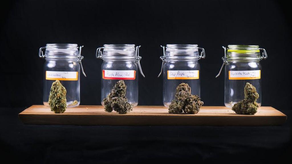 South Philadelphia's First Marijuana Dispensary Offers More Than Just Cannabis