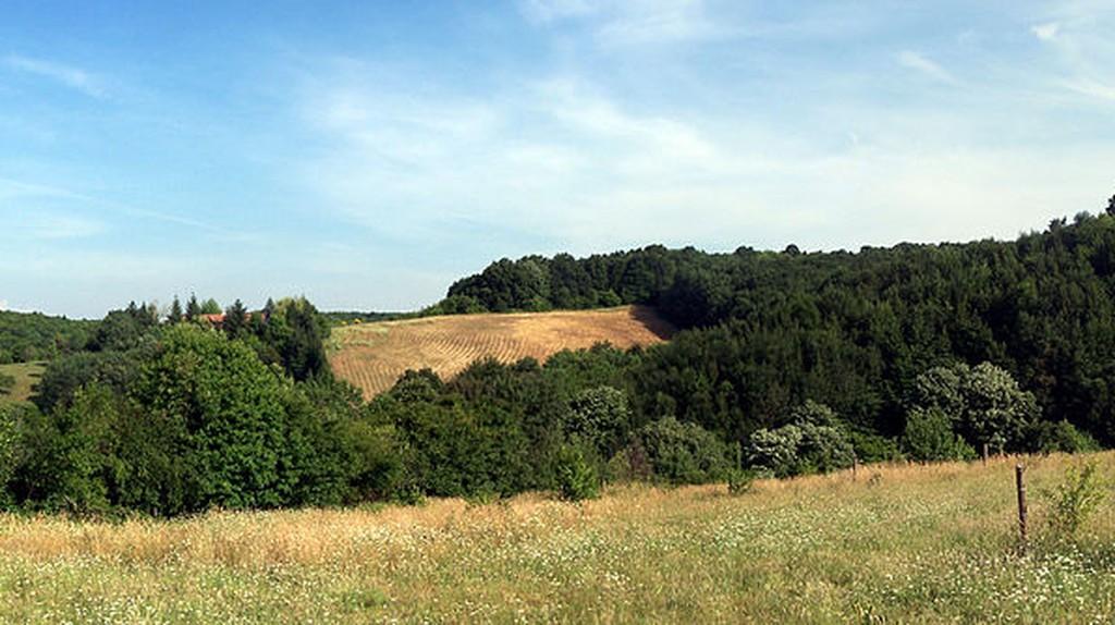 Polonezköy Nature Park | © Darwinek/Wikimedia Commons