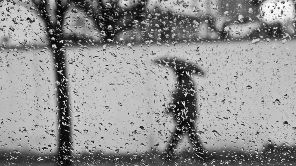 Rainy Day | © Ömer Diyelim/Flickr