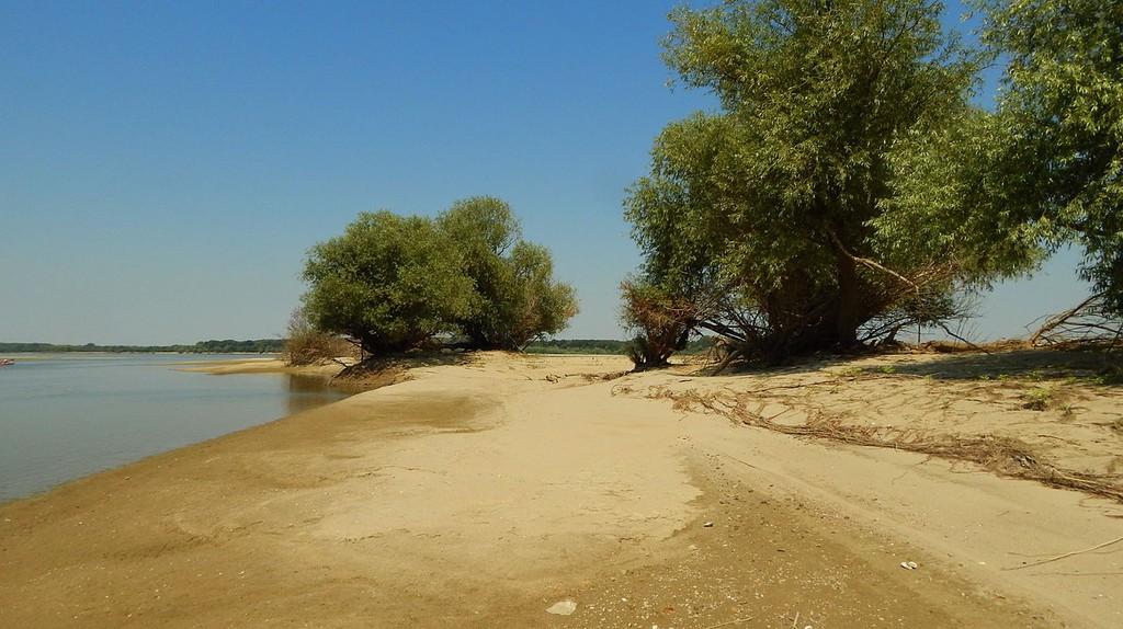 Batin island in the Danube River, Bulgaria | © Iliana Teneva/WikiCommons