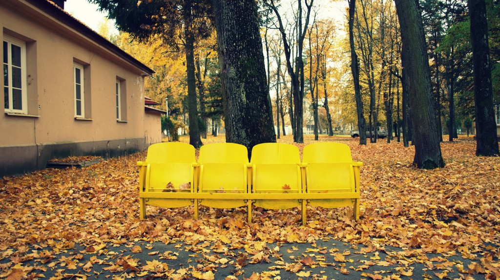 Autumn in Antakalnis |© Mindaugas Danys/Flickr
