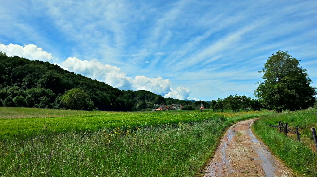 A cycle path│© breki74/Flickr