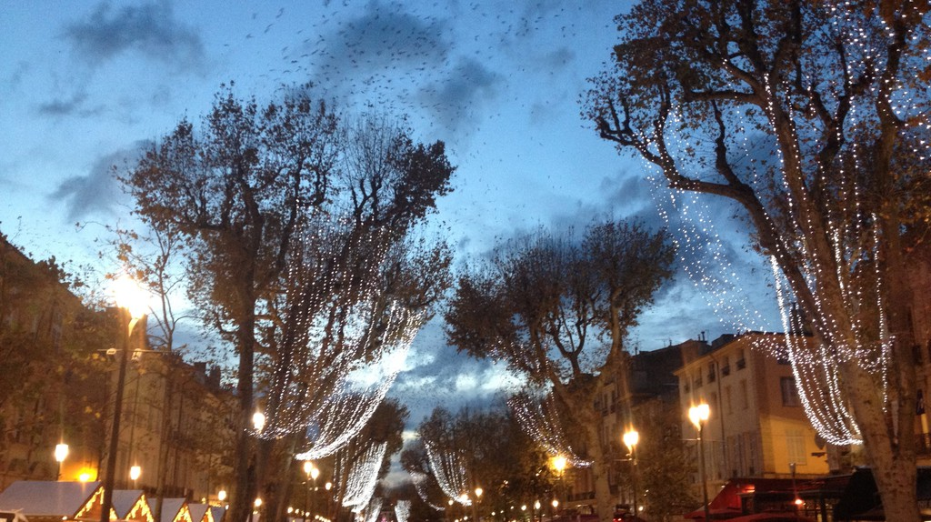 The iconic Cours Mirabeau in Aix en Provence | © Alex Ledsom