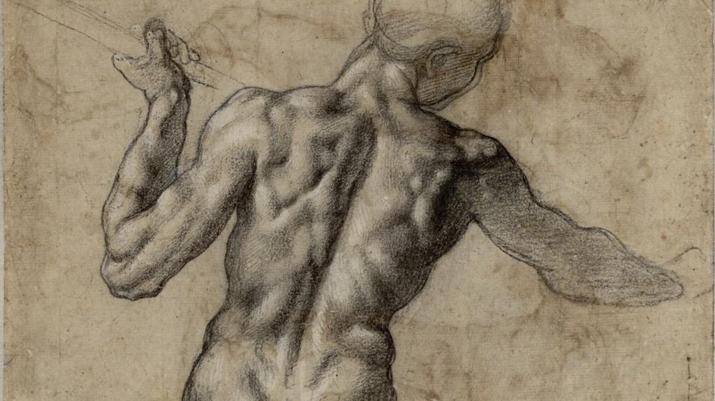 Anatomy study by Michelangelo   Wikimedia Commons