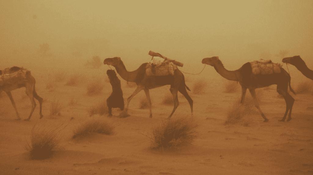 Saharan sandstorm © Burze Piaskowe