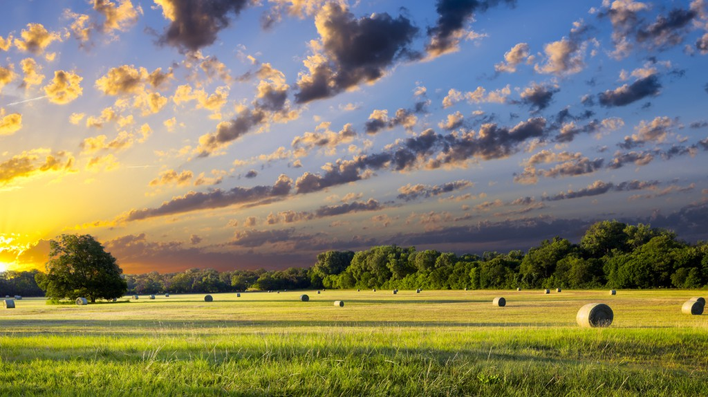Tranquil Texas meadow at sunrise with hay bales strewn across the landscape | © Dean Fikar / Shutterstock