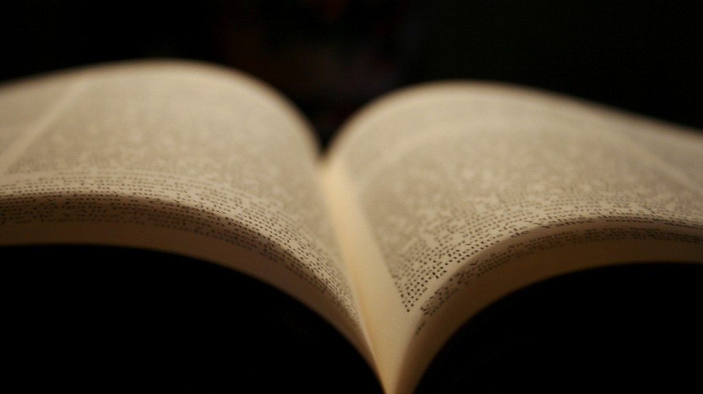 Open book   © Javi Sánchez de la viña/Flickr