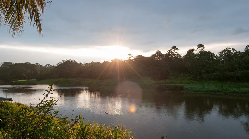 Peruvian Amazon rainforest   © Anna & Michal/Flickr