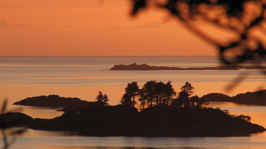 Peach Sunset and Scots Pines, Lochaber   © Courtesy of the Author