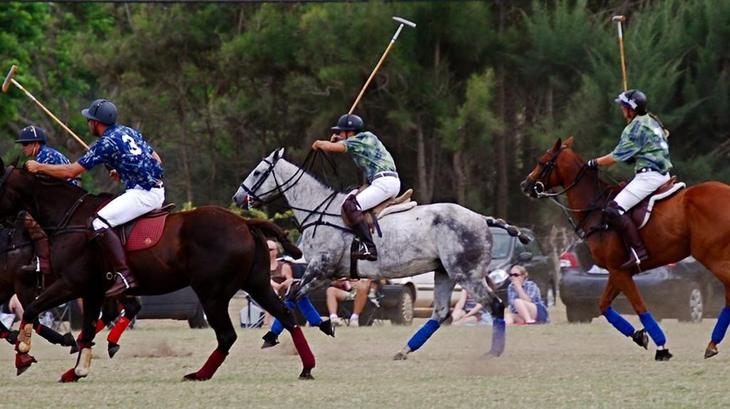 Polo, The Sport of Kings | © karendesuyo/Flickr