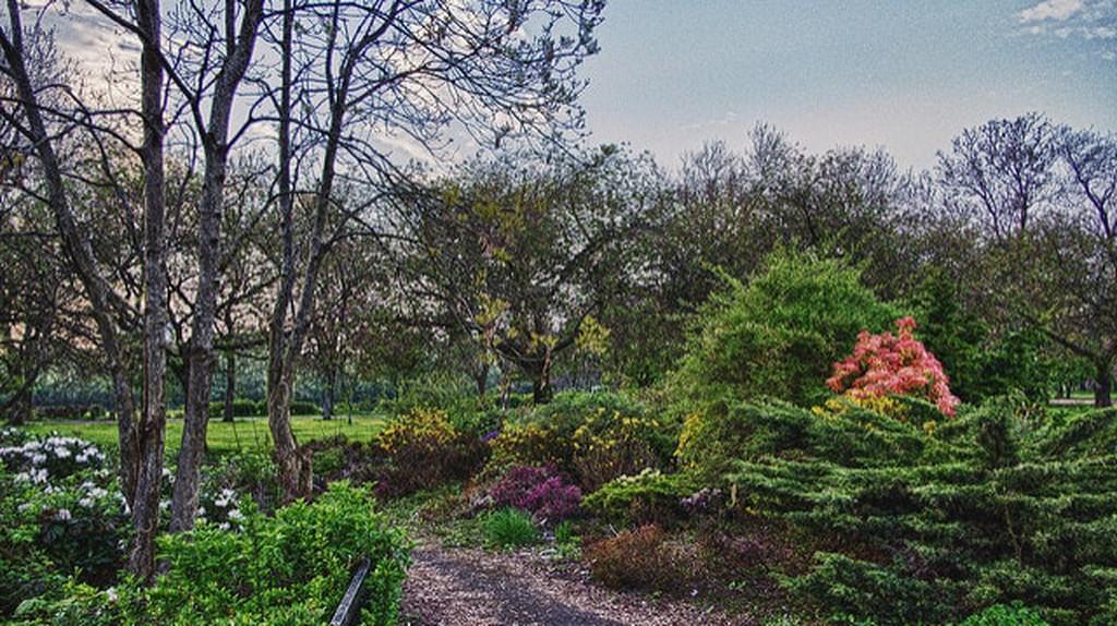 Richmond Park | © thatBilly/Flickr