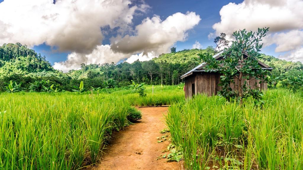 Cambodian countryside | ©Scott Biales/ Shutterstock.com