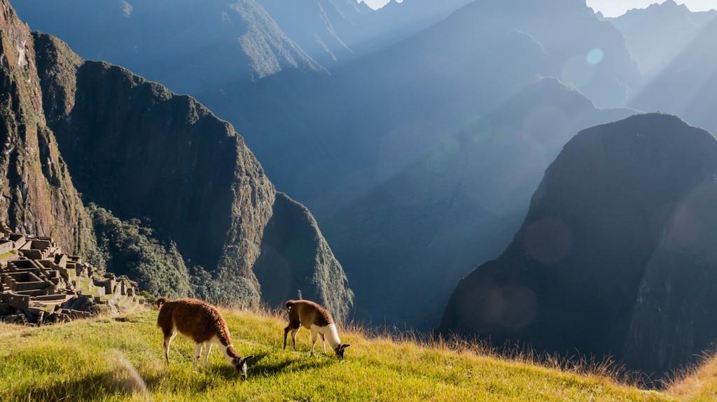 Machu Picchu | © Eder Fortunato / Flickr