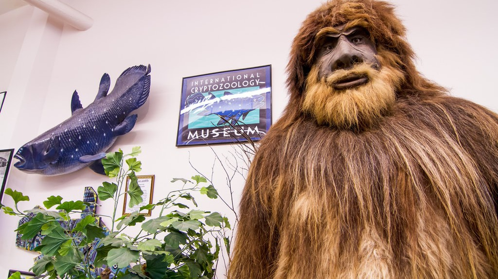 International Cryptozoology Museum | © Rain0975/Flickr