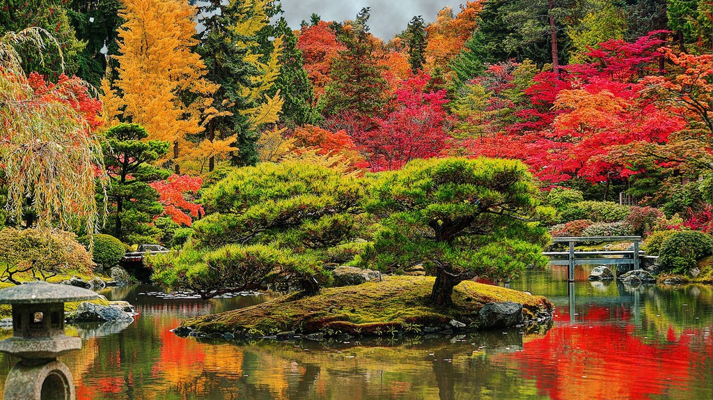 Japanese Garden in Seattle during autumn | ©Rachel Samanyi / Flickr