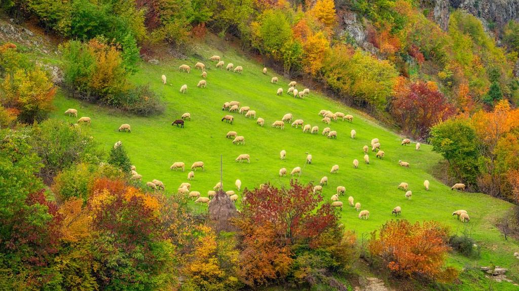 Autumn in Bulgaria | © Jasmine_K / Shutterstock