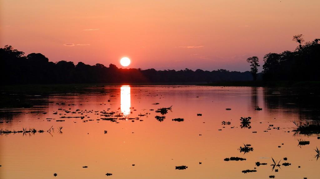 Peruvian Amazon Rainforest | © Anna & Michal / Flickr