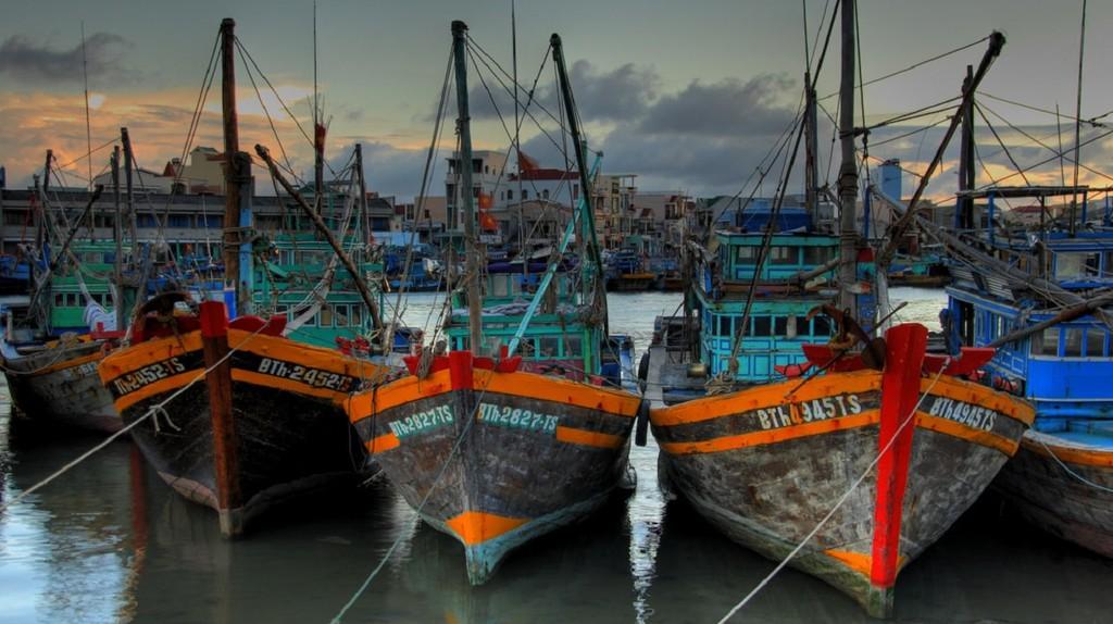Vietnamese fishing fleet   © Lucas Jans/Flickr