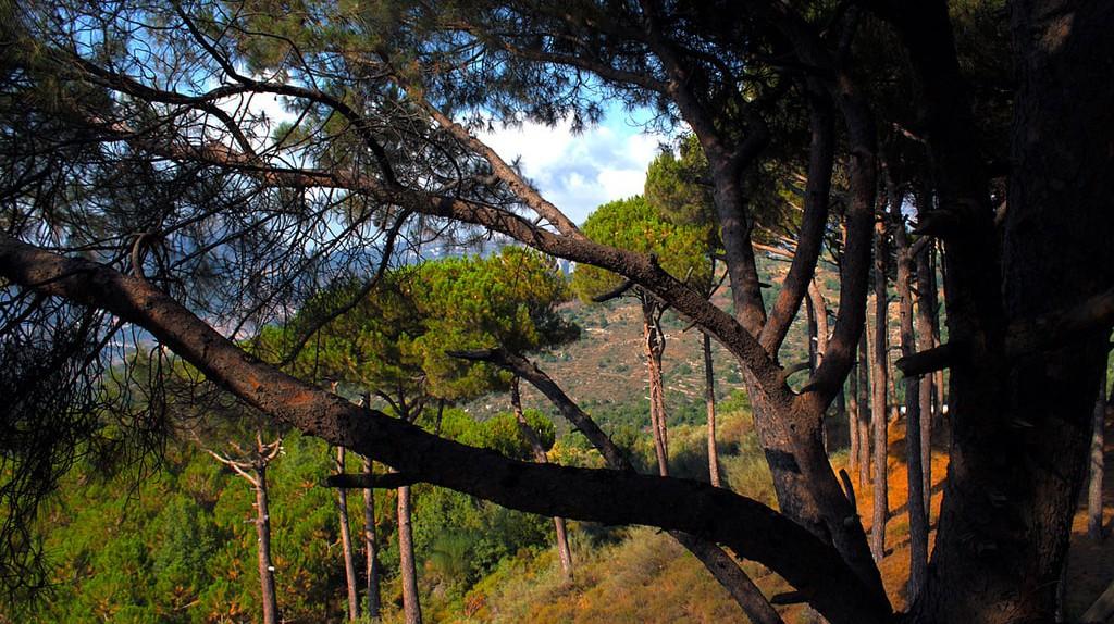 Akkar , Northern Lebanon  | © rabiem22/ Flickr