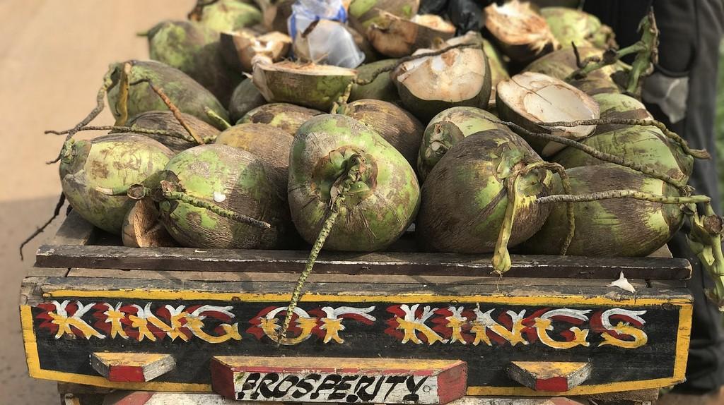 coconuts | © jkebbie/Pixabay