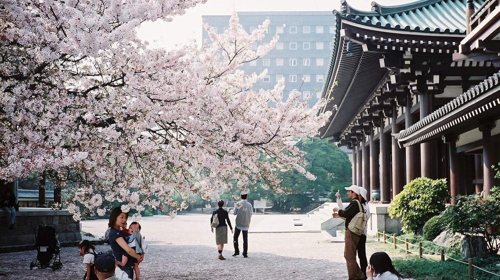 Fukuoka | © Peter Enyeart /Flickr