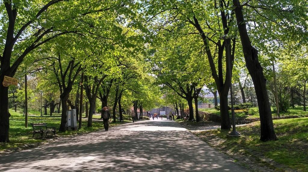 Park in Nis, Serbia   © Sam Bedford