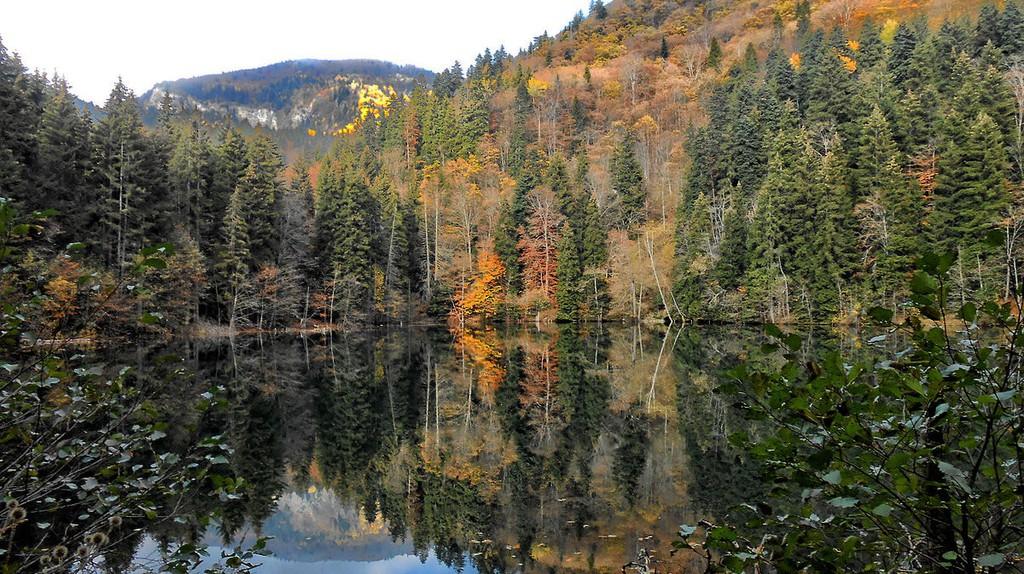 Bateti Lake | © Abramia Giorgi / WikiCommons