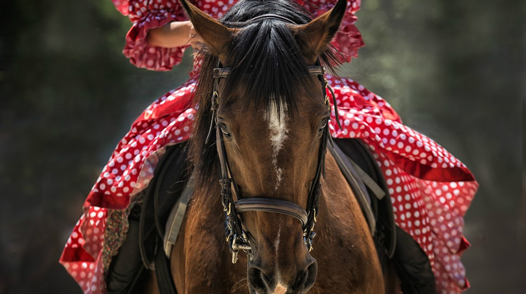Spain is a great place for horse riding ©WenPhotos/Pixabay