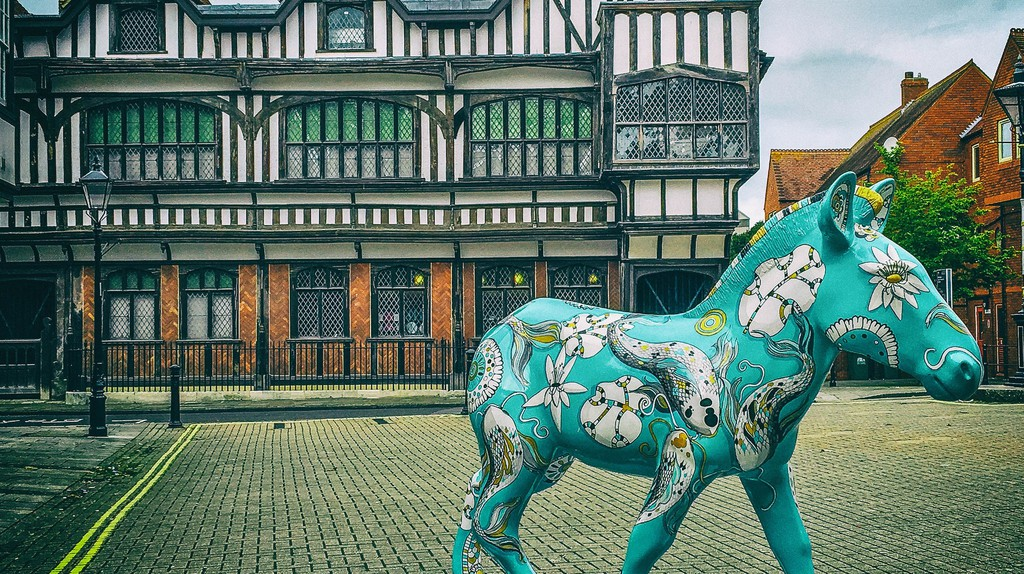 Zany Zebra and the Tudor House Museum | © Mike Beales / Flickr.