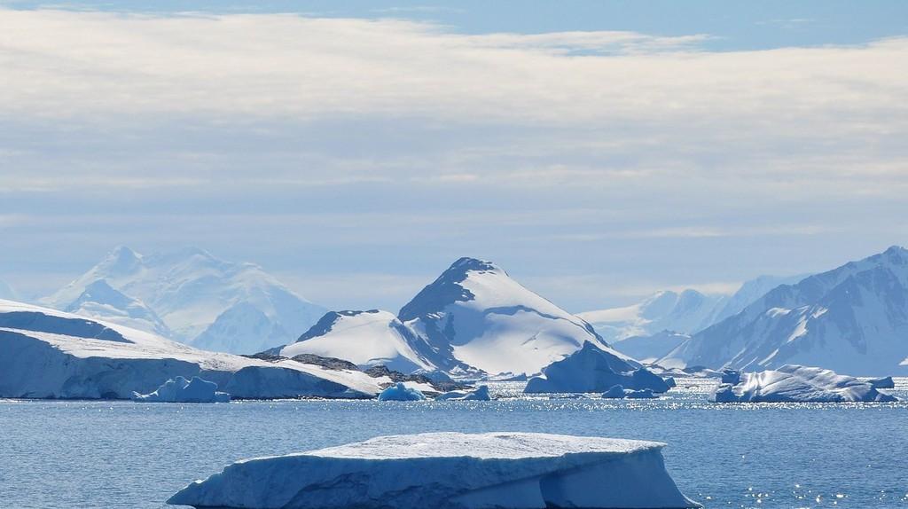 Webb Island, Antarctica | © Vincent van Zeijst / WikiCommons