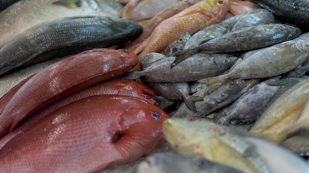 The ever-popular fish market in central Abu Dhabi | © Bob Klannukarn/Flickr