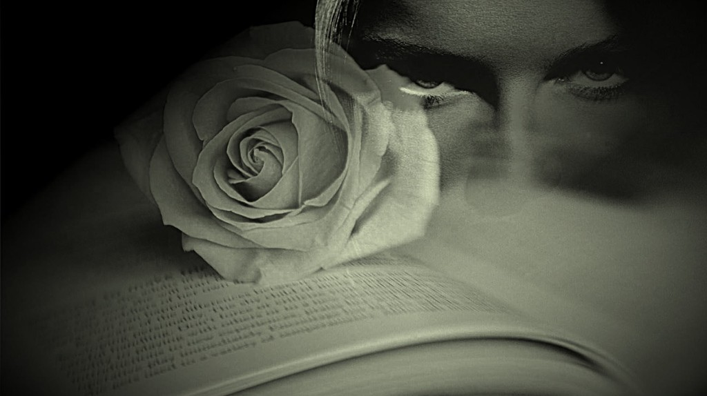 Poems and novels of Lola Rodriguez | © CLAUDIA DEA/flickr