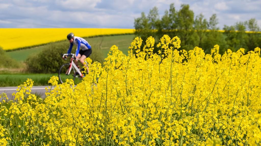 Cyclist |  © Maria Eklind/Flickr