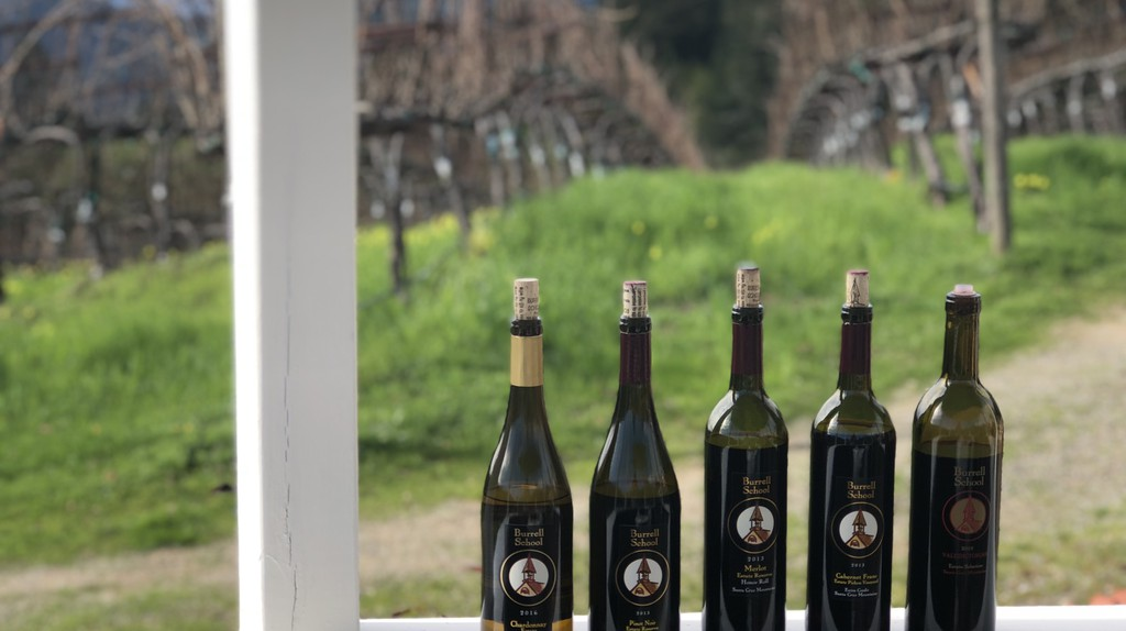 The Best Wineries to Visit in the South Bay Area