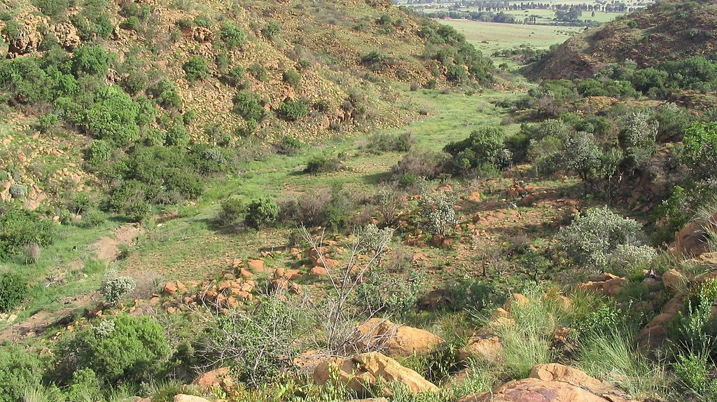 Suikerbosrand Nature Reserve gorge