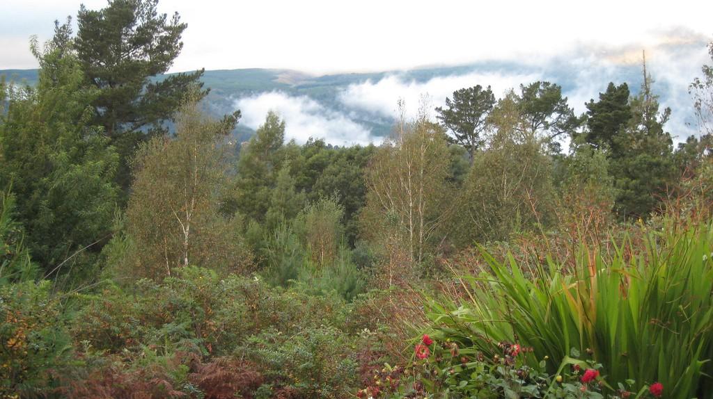 Mountains surrounding Hogsback