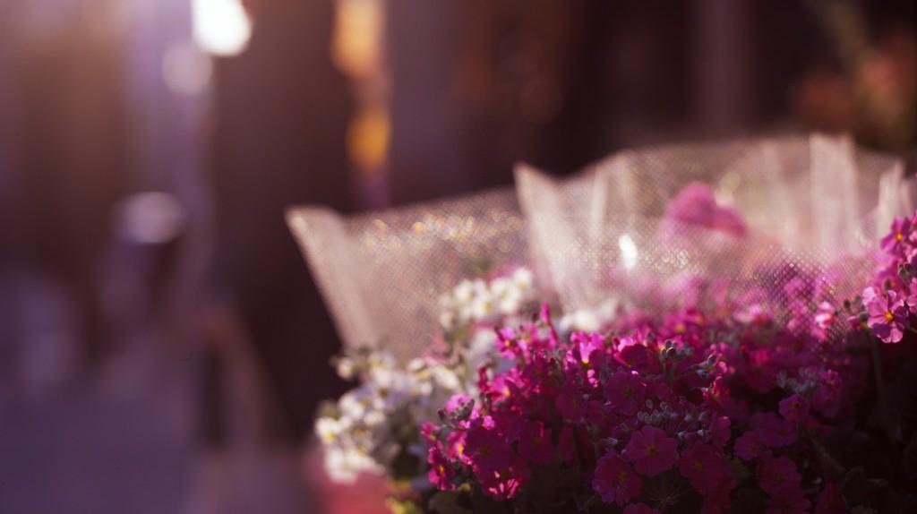 Front of Flower Shop