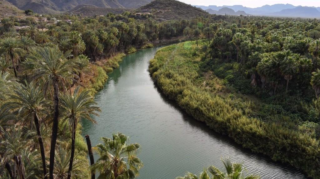 Check out the views fromMisión Santa Rosalía